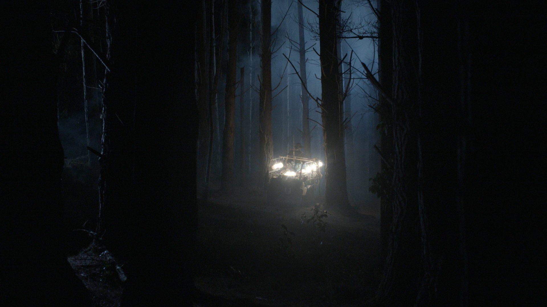 The Light Harvester - 6